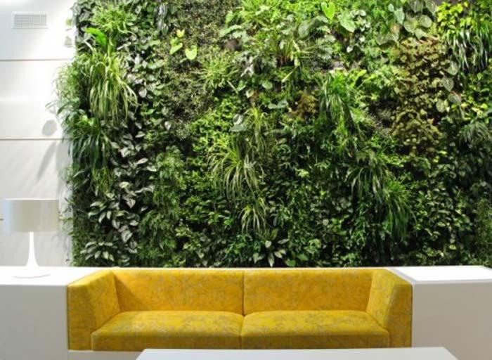plantele-in-design-interior-04