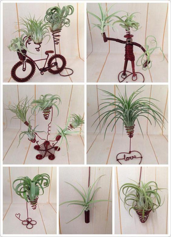 plantele-de-aer-un-nou-trend-in-designul-de-interior-13